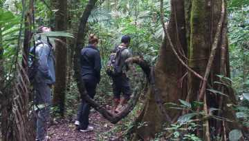 Tamblingan Lake Jungle Trekking