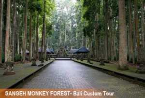 sangeh-monkey-forest-1