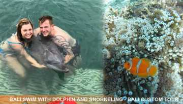 swim-with-dolphin-snorkeling