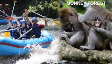 rafting-monkeyforest